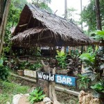 Small_World_Bar_Tonsai